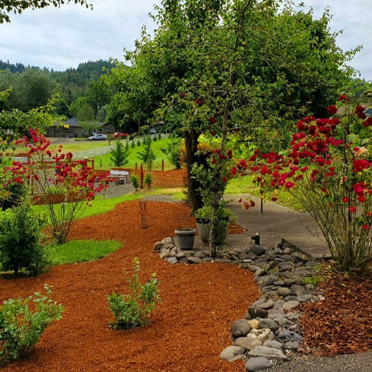 Adult Foster Care Outdoor Access, Roseburg area, OR